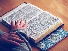 near me bible study classes